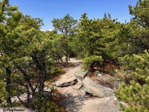 North Ridge Trail of Cadillac Mountain Acadia National Park Maine
