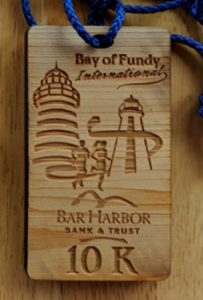 Bay of Fundy International Race