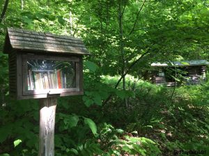 Little Free Library with Wiley Shelter in the Background Appalachian Trail NY
