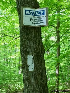 Ironic Sign in the Woods on the Appalachian Trail in New York