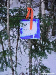 Winter Hike Eagle Rock Moosehead Lake Region Greenville Maine Snowshoe Pinnacle Pursuit