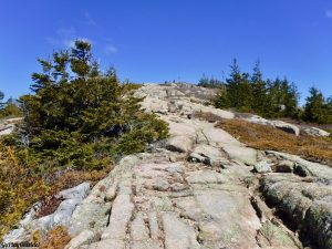 Acadia National Park Maine Pemetic Mountain Mount Dessert Island