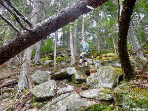 Eddington Maine Blackcap Mountain Hiking